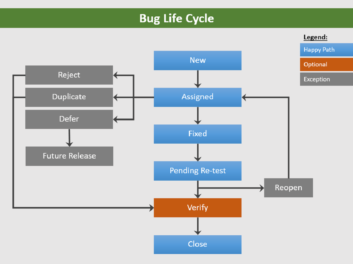 Graphic illustrating the bug life cycle with multiple pathways