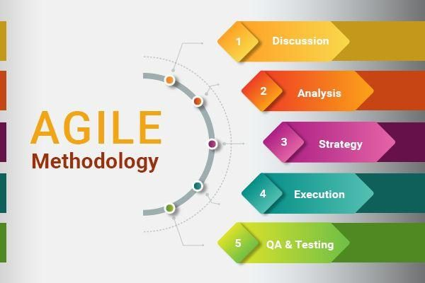 Agile methodology principles